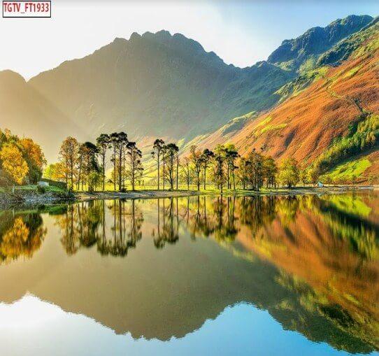 Tranh dán tường phong cảnh đẹp nhất