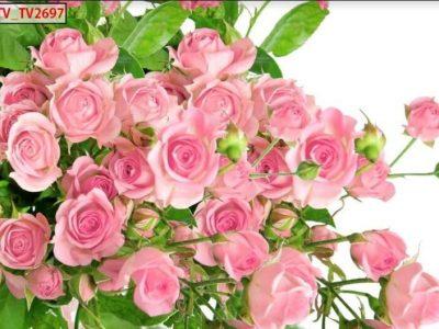 mẫu tranh in hoa hồng đẹp