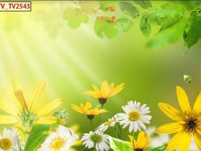 tranh tường hoa lá đẹp